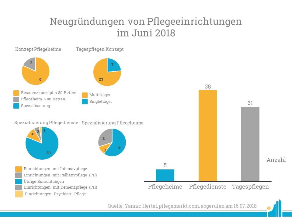 Eine Analyse der Pflegeeinrichtungen nach Sektor im Juni 2018