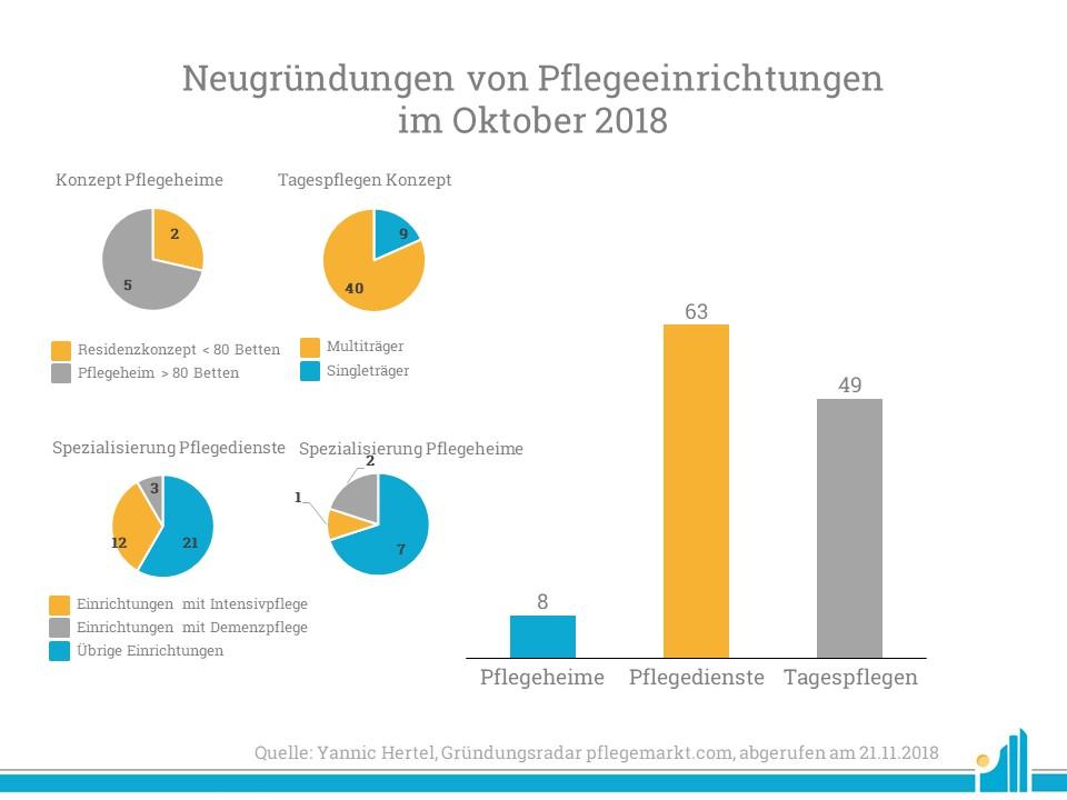 Eine Analyse der Pflegeeinrichtungen nach Sektor im November 2018