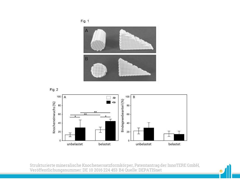 Patentradar: Patent für einen Strukturierte mineralische Knochenersatzformkörper