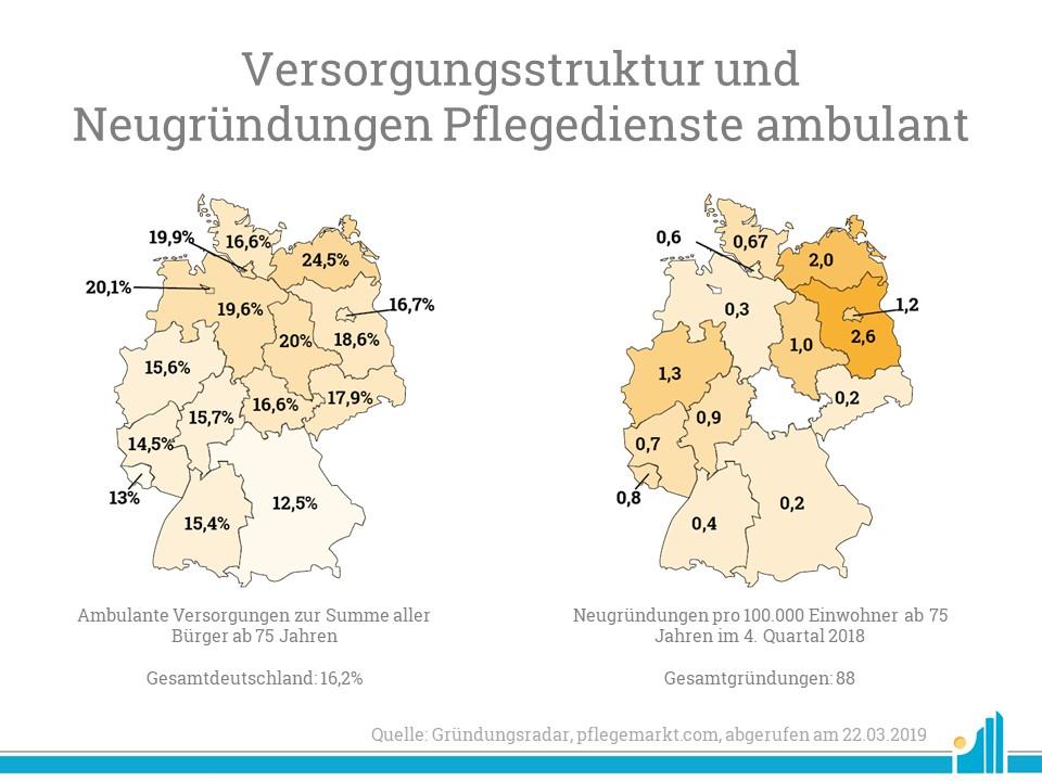 Versorgungsstruktur ambulante Pflegedienste 2019