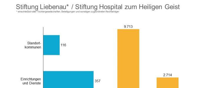 Stiftung Stiftung Liebenau Allgemeine Kennzahlen 2019