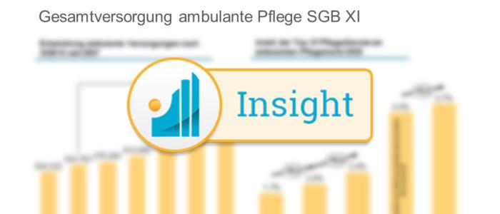 Analyse der Versorgungsstruktur in der ambulanten Pflege Insight