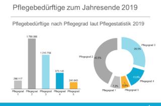 Auswertung Pflegegrade - Amtliche Statistik